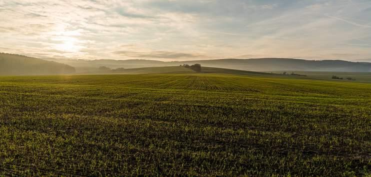 Der Schaffhauser Kantonsrat spricht sich gegen die «Bodeninitiative» aus. (Symbolbild: pixabay.com/torstensimon)