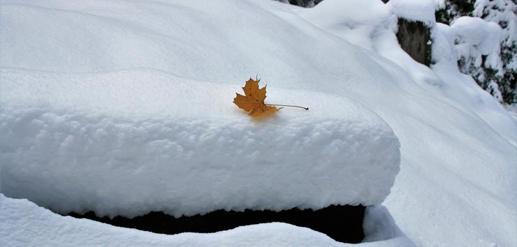 Unter anderem auf dem Säntis schneite es kräftig. (Symbolbild: pixabay.com)