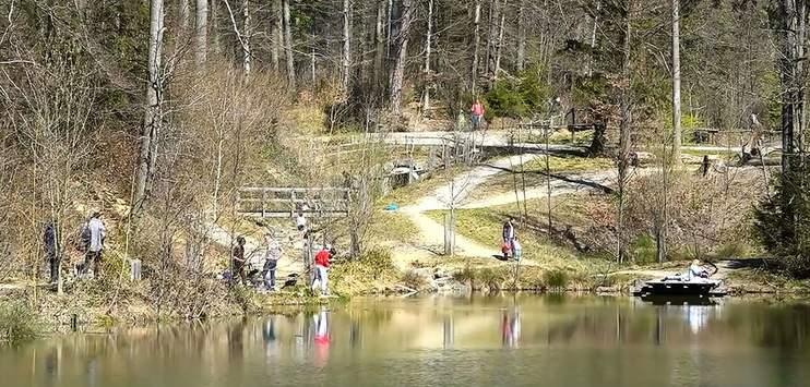 Bei den Walcheweihern in Winterthur haben am Wochenende bis zu 80 Personen eine Party gefeiert. (Bild: TELE TOP)