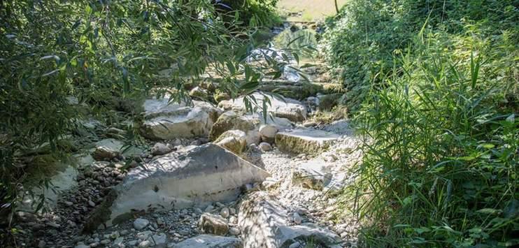 Im Kanton Thurgau könnte schon bald das nächste Wasserentnahmeverbot ausgerufen werden. (Bild: facebook.com/Kanton Thurgau)