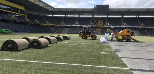 Der FC Wädenswil hat den Rasen gekauft. (Bild: bscyb.ch)