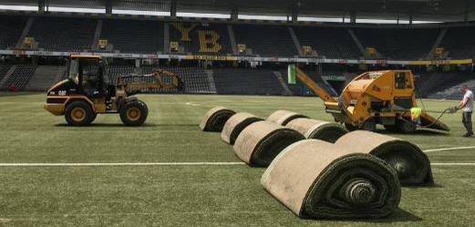 Der Rasen wird im Stade de Suisse zusammengerollt. (Bild: bscyb.ch)
